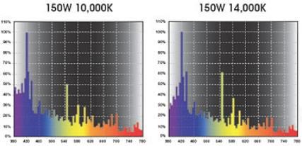 Typical 10K and 14K metal halide lamp spectrum which emits the yellow, orange, and red spectrum. This can lead to nuisance algae growth. Low Kelvin white LEDs can produce the same results. Photo courtesy of Ushio Electric