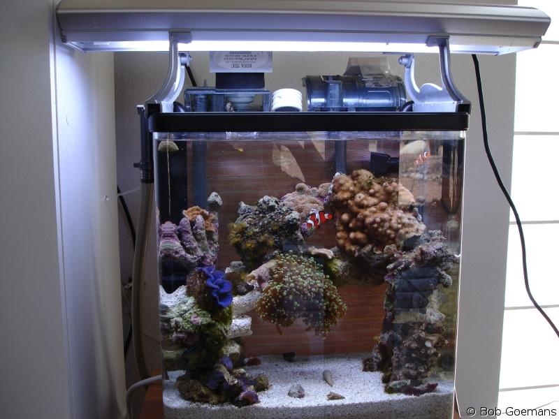 The Living Marine Aquarium Manual Chapter 2