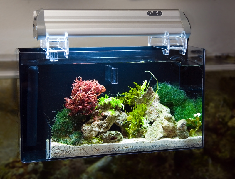 The Living Marine Aquarium Manual Chapter 8 System