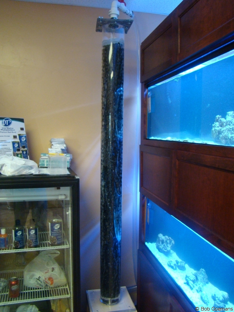 The Living Marine Aquarium Manual Chapter 4 Filtration