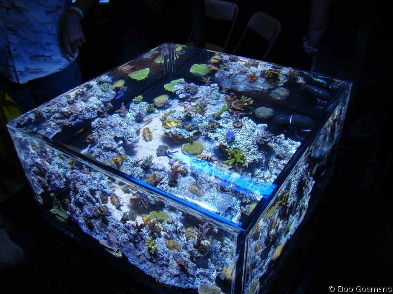 The Zero Edge Aquarium